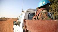 The Security Council is concerned about the recent developments in South Sudan, and calls on the government of the country to facilitate the work of the temporary mission in Abyei