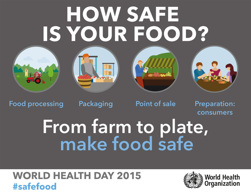 un stresses importance of food safety  from farm to plate