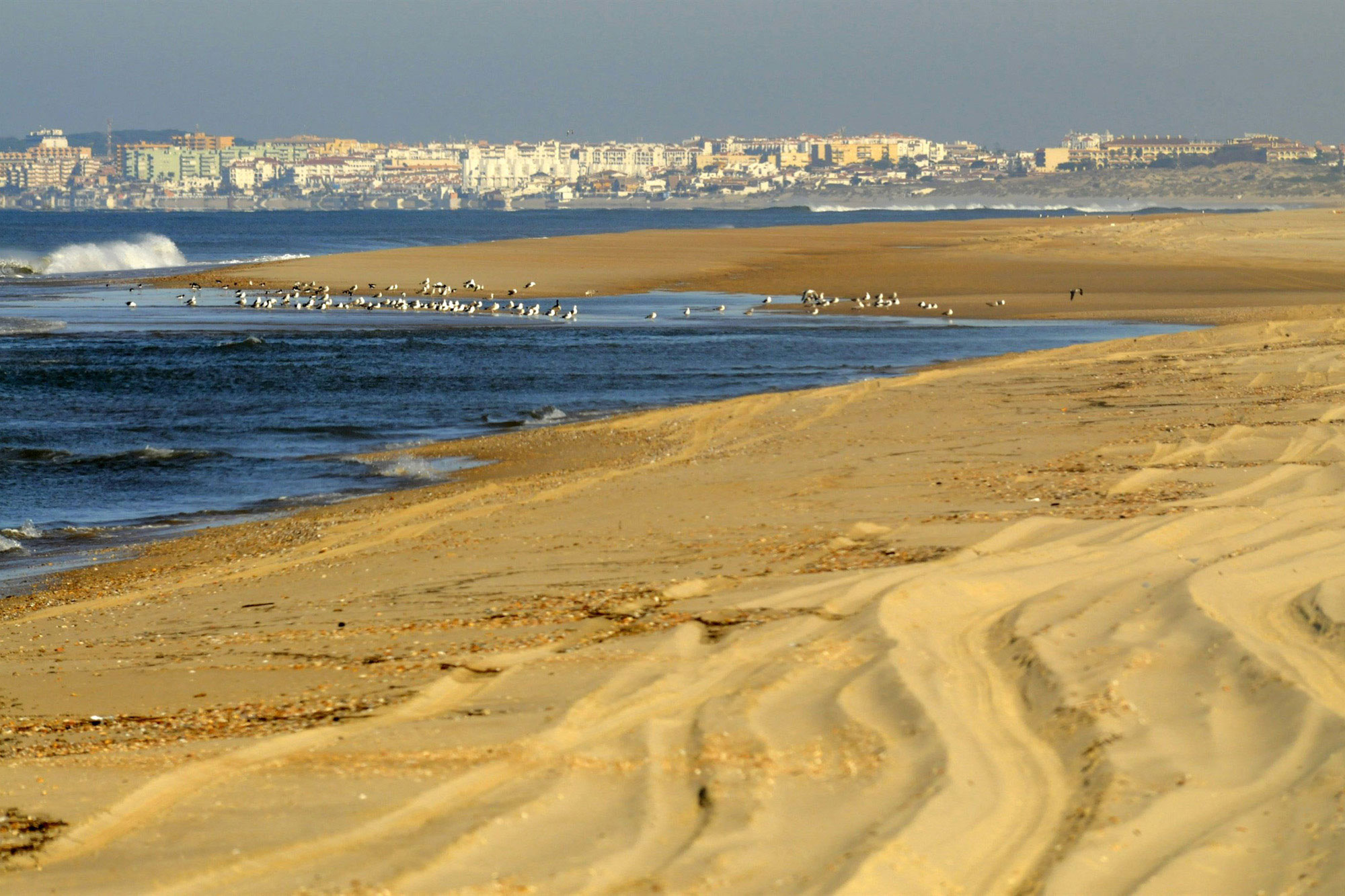 Doñana National Park, a natural wetland reserve in Andalusia, southern Spain. GRID Arendal/Peter Prokosch