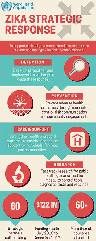 Zika strategic response factsheet