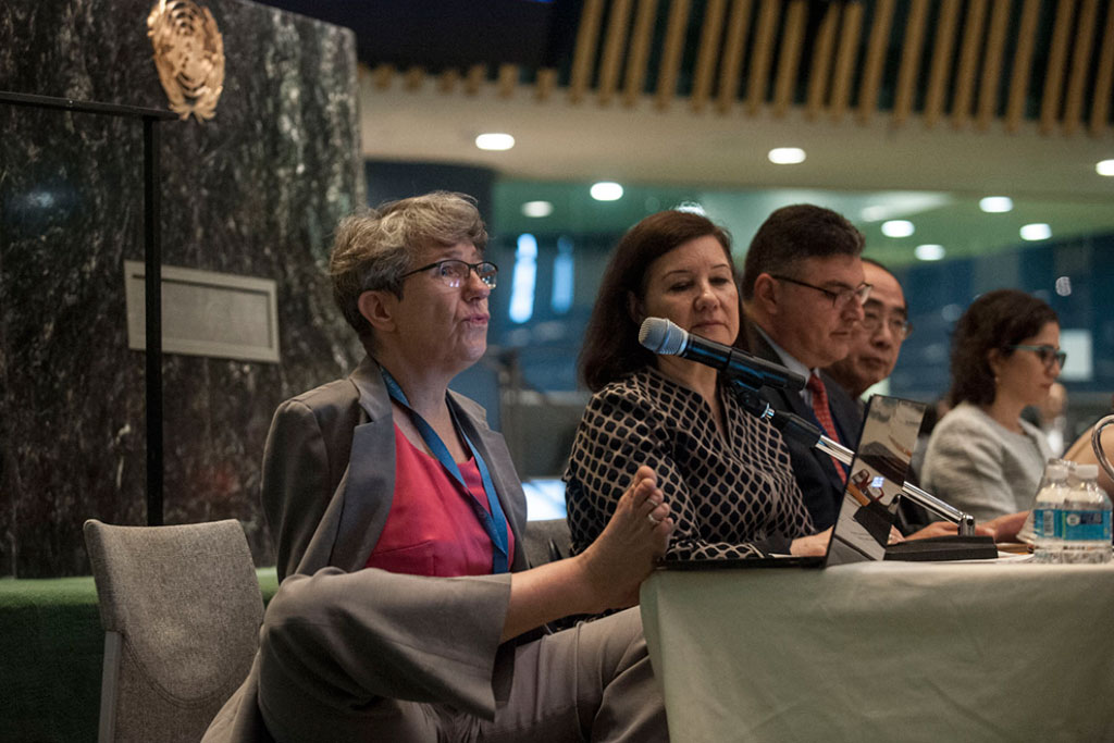 Theresia Degener, Chairperson of the Committee on the Rights of Persons with Disabilities. UN Photo/Kim Haughton