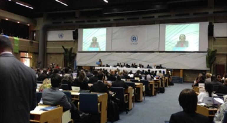 United Nations Environment Assembly (UNAE) meeting.