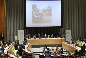 Opening session of the 2014 Economic and Social Council Youth Forum.