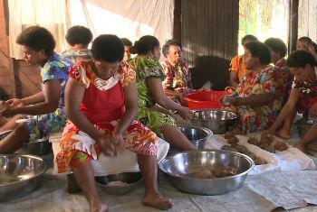 Women of Cicia Island in Fiji grating coconuts. File