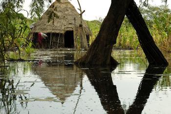 Floods devastate Southern Sudan. (file photo.