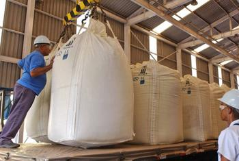 Workers load sugarcane at an ethanol distillery in Brazil.