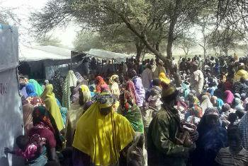 Nigerian refugees fleeing attacks by insurgents on Baga town and surrounding villages, wait to be registered by UNHCR in Ngouboua, western Chad.