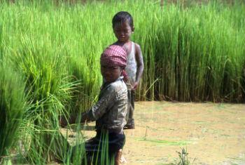 Child labour on family farms should be addressed in an appropriate and context-sensitive way that respects local values and family circumstances.