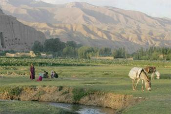 FAO launched its first-ever report on food insecurity in Europe and Central Asia. FAO File Photo/Giulio Napolitano