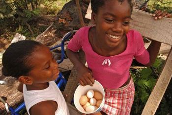 Family poultry production is an important component of the livelihoods of many small farmers in developing countries.