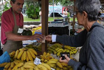 Buying food at a market in São José, Rio de Janeiro, Brazil.