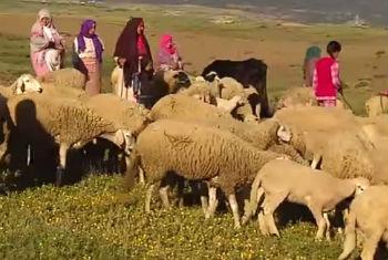 Women in remote mountain communities in Morocco.