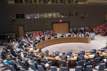 UN Security Council meeting. UN File Photo/Cia Pak