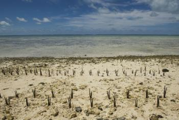 Dryland: Island Nation of Kiribati Affected by Climate Change.