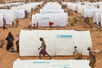 Dadaab camp.