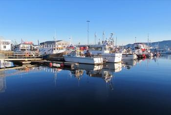 Whale-watching and fishing boats in the harbour of Reykjavik, Iceland.