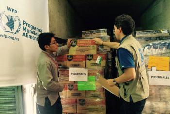 Loading trucks with WFP food for the quake-stricken town of Pedernales in Ecuador.