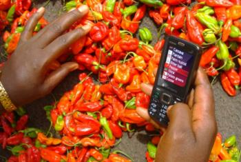 Selling spices is now possible on a mobile phone, but countries need to adjust to new distribution methods if they're to take advantage of the virtual marketplace.