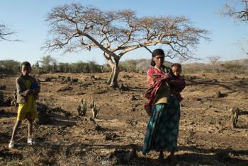 3 February 2016, Ziway Dugda woreda, Arsi zone, Oromia region Ethiopia. OCHA/ Charlotte Cans