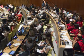 UN Permanent Forum on Indigenous Issues.