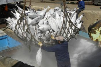 Inspectors will be able to check on actual fish catches on visiting ships under the new Agreement.