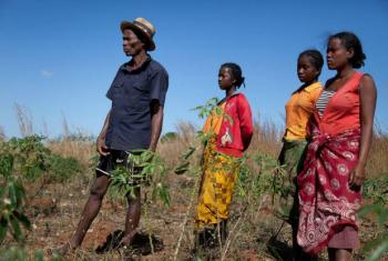 A family of farmers watch as locust-control workers spray pesticides on their land in Madagascar's Betroka region (2015). File