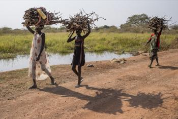 Girls returning with collected firewood to the United Nations Mission in South Sudan (UNMISS) POC site.