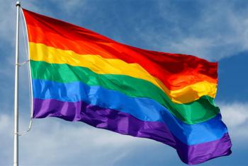 The rainbow flag, commonly known as the LGBT pride flag.