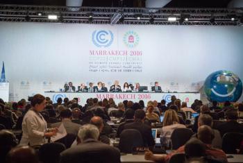 COP 22 plenary meeting.