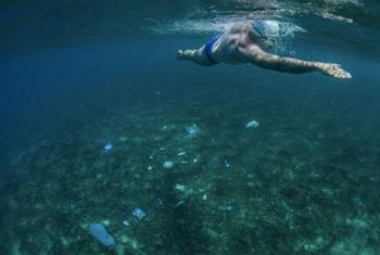 UNEP Patron for Oceans, Lewis Pugh, is swimming the Seven Seas to urge policy makers to protect at least 10 per cent of the world's seas. In the Arabian Sea off Oman, the seabed was a rubbish dump. No fish. No coral. Just tyres, plastic packets, bottles,