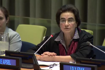 Dr Apsel speaks at the panel discussion. Screen grab from UN Web TV.