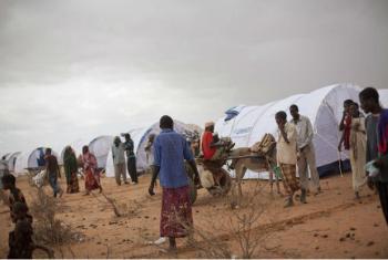 Kenya/Somali refugees fled Somalia because of ongoing fighting and food shortage.