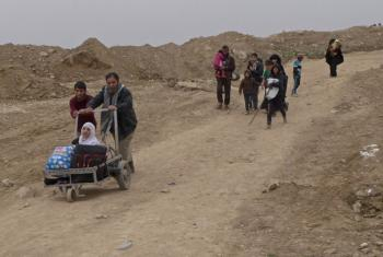In Mosul, Iraq, aging family members are pushed for hours through frontline fighting between the army and the Islamic State of Iraq and the Levant (ISIL/Da'esh), to reach safety.