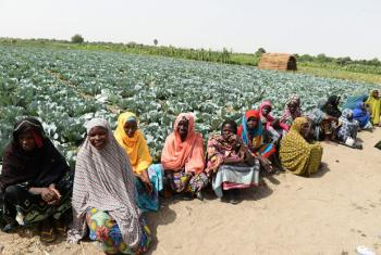 Women at the FAO-supported farm centre in Maiduguri, northeastern Nigeria.