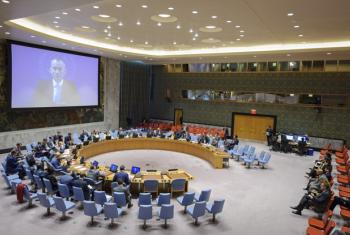Nickolay Mladenov (shown on screen) briefs the Security Council via video teleconference from Jerusalem.