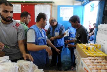 UNRWA staff distributing food to displaced families in various UNRWA shelters in Gaza City.