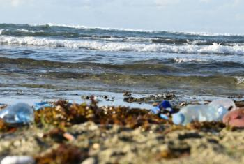 Kenya's beaches are littered with marine debris from the trade winds in the Indian Ocean, sometimes travelling over 8,000 kilometers from all parts of Asia.