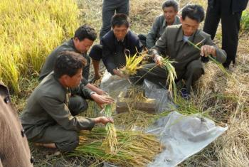 North Korea's food production hit by the worst drought since 2001.