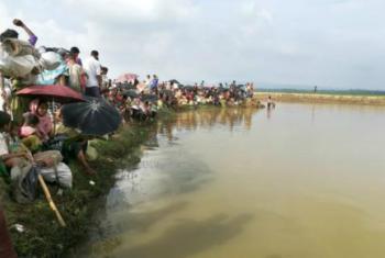 Members of the Rohingya community crossing the border into Bangladesh.