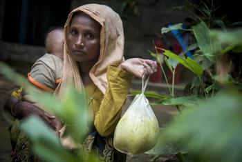 Woman in Cox's Bazar, Bangladesh, receives food from UN and aid partners after fleeing Myanmar. On Wednesday IOM launched a US$120 million appeal for Rohingya refugees.