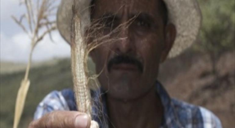 Hugo Jolón perdió la cosecha de maíz en el corredor seco de Guatemala. Foto PMA / Francisco Fión