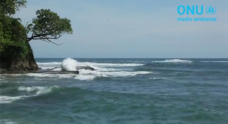 El 15,7% de los mares en Costa Rica son zonas marinas protegidas. Foto: captura de pantalla video del PNUMA.
