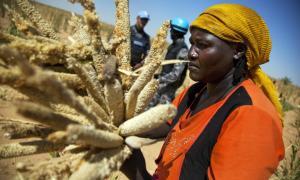 Mujeres rurales en Darfur. Foto de archivo ONU/Albert Gonzalez Farran.