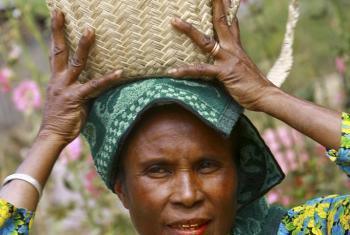 Una mujer rural lleva su canasta con café en Timor Leste. Foto ONU/Martine Perret