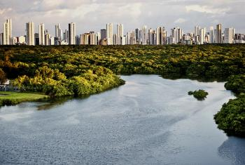 Las ciudades jugarán un papel fundamental a la hora de reducir las emisiones de dióxido de carbono. Foto: ONU-Habitat/Sergio Amaral