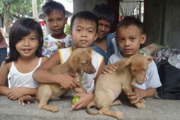 La vacunación masiva de perros es clave para eliminar la rabia. Foto de archivo: OMS.