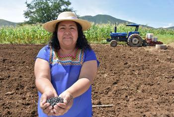 Patricia Juárez, nombrada por la FAO embajadora del Año Internacional de las Legumbres.Foto: CINU México