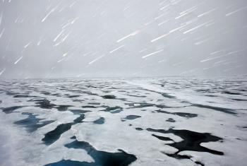 Septiembre de 2009. Hielo polar, Noruega. Foto de archivo: ONU/Mark Garten.