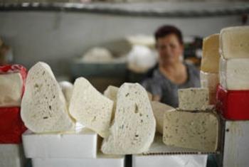 Armenia: queso en venta en el mercado de Yereván. Foto FAO