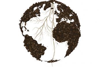 Logo Día Mundial del Suelo. Foto: FAO